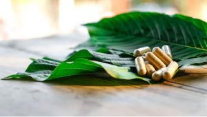 finding the best kratom strains