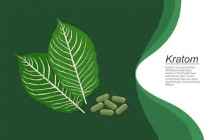 Find out what kratom is